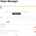 NM Repo Manager File Uploading