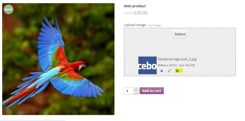 showing-image-cropping-icon-when-image-is-uploaded