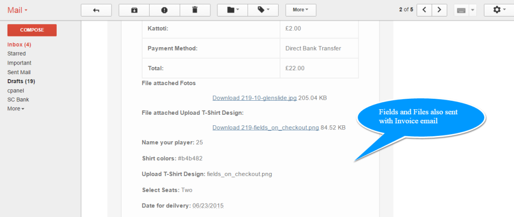 6 Checkout Field Email 1024×433